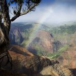 Kauai Waimea Canyon photo by Stefan Iliev