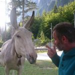 Ivo is explaning to the donkey that this is our table